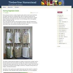 Storing Vegetable Seeds - Timberline Homestead