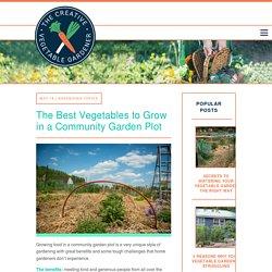 Creative Vegetable Gardener:The Best Vegetables to Grow in a Community Garden Plot - Creative Vegetable Gardener
