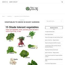 Vegetables to Grow in Shady Gardens - bitesizegardening.com
