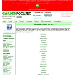 Guides to growing vegetables - GardenFocused