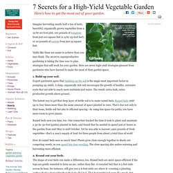 Grow More Vegetables with these Seven Gardening Secrets
