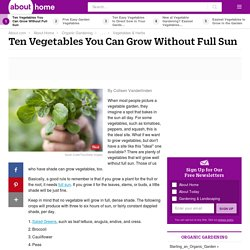 Grow Vegetables in the Shade - Ten Vegetables You Can Grow Without Full Sun