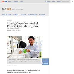 Sky-High Vegetables: Vertical Farming Sprouts In Singapore : The Salt