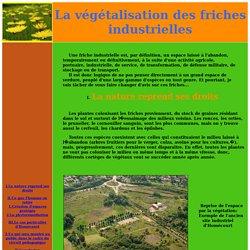 La végétalisation des friches industrielles