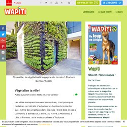 Végétalise ta ville ! - Wapiti magazine - actu nature - environnement
