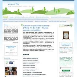 Nutrition / Végétalisme crudivore - Enfants - Herbe de Blé - Plantes sauvages comestibles