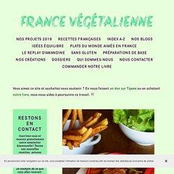 Carbonade flamande (végétarien, vegan) — France végétalienne