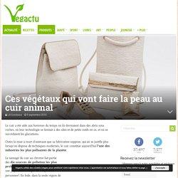 Ces végétaux qui vont faire la peau au cuir animal – Vegactu