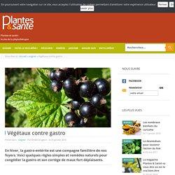 Végétaux contre gastro - Plantes & santé