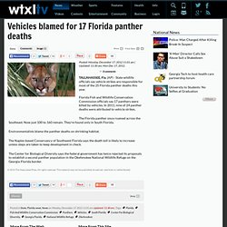 Vehicles blamed for 17 Florida panther deaths