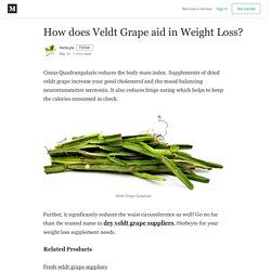 How does Veldt Grape aid in Weight Loss? - Herbcyte - Medium
