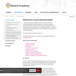 Velkommen til grundskoleprojekter - Biotech Academy