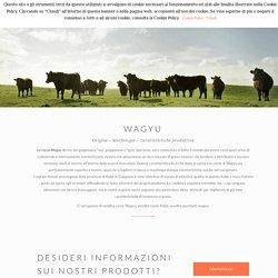 Vendita carne Wagyu Kobe - pacchetti al dettaglio