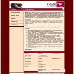 C mara Venezolana del Calzado y Componentes - CAVECAL