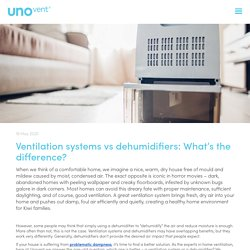 Ventilation systems vs dehumidifiers: What's the difference?