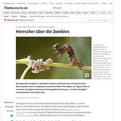 Verhaltensbiologie - Herrscher über die Zombies