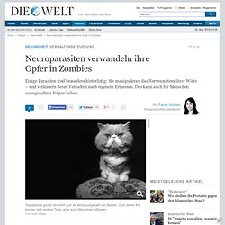 Verhaltenssteuerung : Neuroparasiten verwandeln ihre Opfer in Zombies - Nachrichten Gesundheit