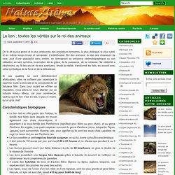 Le lion : toutes les vérités sur le roi des animaux ~ Nature extrême