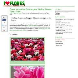 Flores Vermelhas Baratas para Jardins: Nomes, Tipos, Fotos