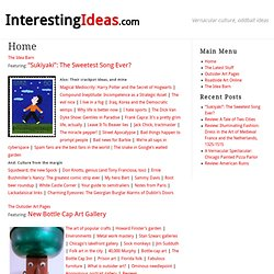 INTERESTING IDEAS: Outsider art, roadside art & signs, eccentric culture