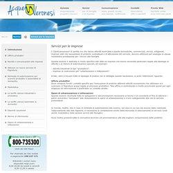 Acque Veronesi: Servizi per le imprese - Introduzione