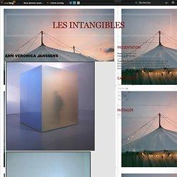 """""""Les intangibles"""" Ann Veronica Janssens"""