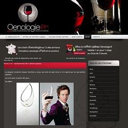 Verres à vin : représentation des 7 pêchés capitaux
