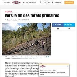 Vers la fin des forêts primaires