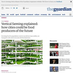 Vertical farming explained: how cities could be food producers of the future