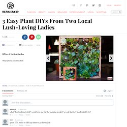 Photo 1- 3 Easy Plant DIYs From Two Local Lush-Loving Ladies
