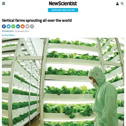 Vertical farms sprouting all over the world - tech - 16 January 2014