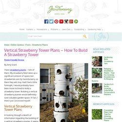 Vertical Strawberry Planter: Learn About Planting In Vertical Strawberry Towers