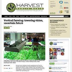 Vertical farming: towering vision, uncertain future