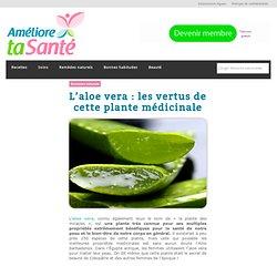 L'aloe vera : les vertus de cette plante médicinale