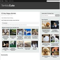10 Very Happy Animals