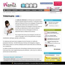 Vétérinaire : fiche métier pour devenir Vétérinaire