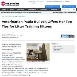 Veterinarian Paula Bullock Offers Her Top Tips for Litter Training Kittens - EIN Presswire