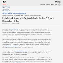 Paula Bullock Veterinarian Explores Labrador Retriever's Place as Nation's Favorite Dog