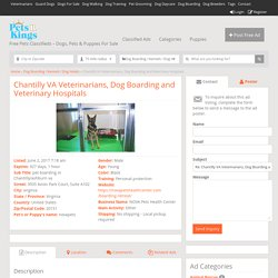 Chantilly VA Veterinarians, Dog Boarding and Veterinary Hospitals - Free Pets Classifieds - Dogs, Pets & Puppies For Sale