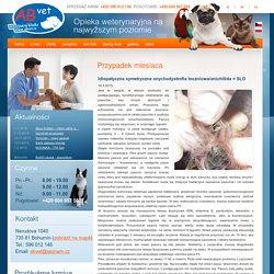Případ měsíce- Veterinární klinika Bohumín - Veterina Ostrava - AB VET