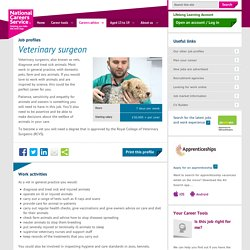 Veterinary surgeon job information
