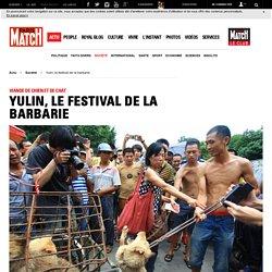Viande de chien et de chat - Yulin, le festival de la barbarie