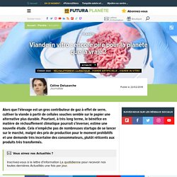 Viande in vitro : encore pire pour la planète que la vraie ?