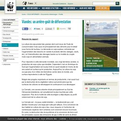 Viandes: un arrière-goût de déforestation
