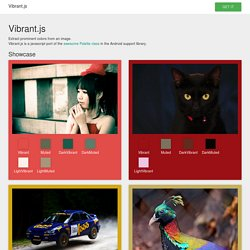Vibrant.js - Extract prominent colors from an image.