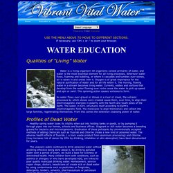 Vibrant Vital Water® - Water Education