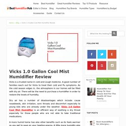 Vicks 1.0 Gallon Cool Mist Humidifier Review