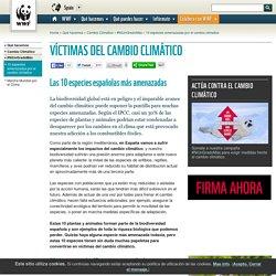 VÍCTIMAS DEL CAMBIO CLIMÁTICO