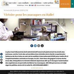ONE VOICE 29/01/20 Victoire pour les macaques en Italie!
