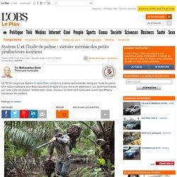 System U et l'huile de palme : victoire méritée des petits producteurs ivoiriens